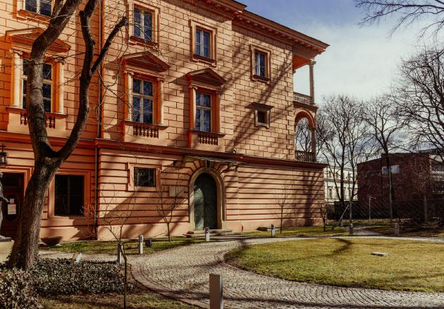 front pałacu, drzewo alejka