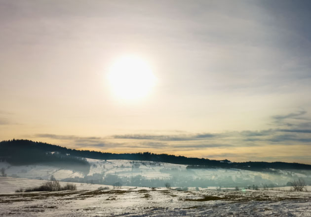sun over a winter forest landscape